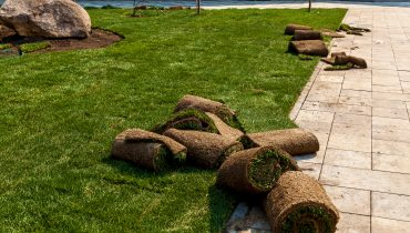 sod installation