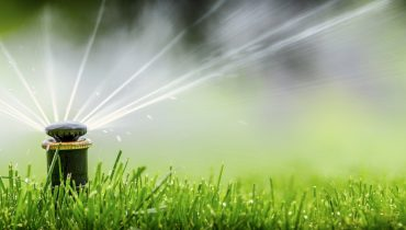 simple monkey lawn care and sprinkler
